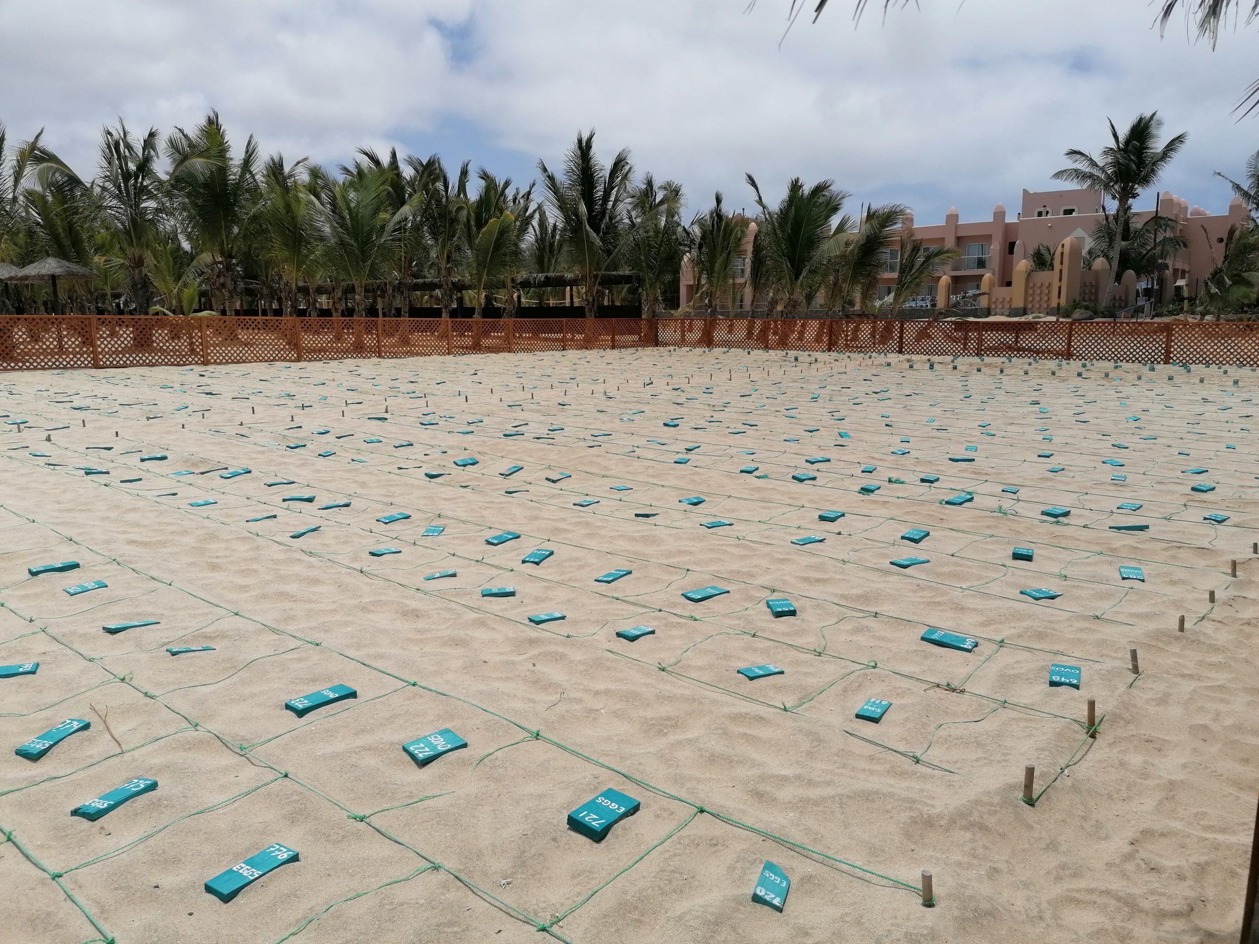 Voo - Cabo Verde - Ilha do Sal